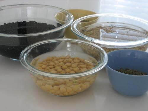 beans_story2.jpg