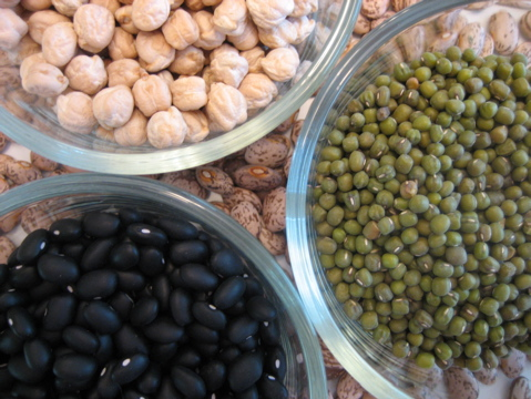 Dried bean recipes
