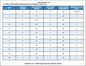 Printable Free Exercise Plan: 12 Week Intermediate Walking Program