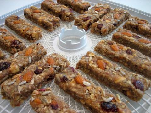 granola bars no bake cookies dehydrate