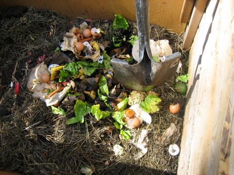 compost bins compost pile