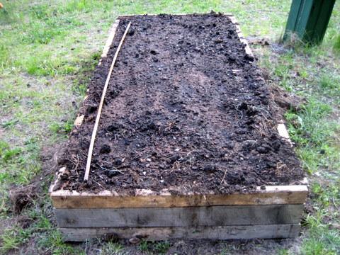 organic gardening square foot gardening rows