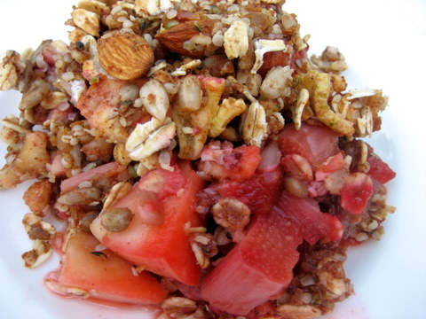 strawberry rhubarb dessert crisp