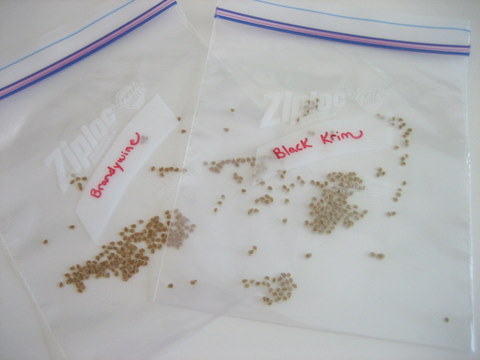how to save seeds heirloom seeds