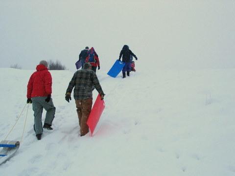 sled toboggan snow