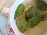 mint tea herbal tea