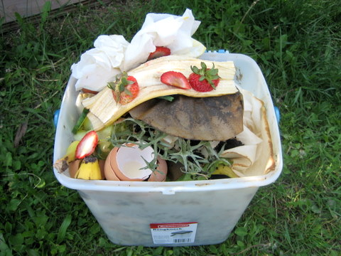 What You Can And T Compost