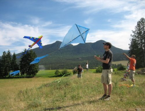 How to Make a Kite from a Plastic Bag (free kite design)