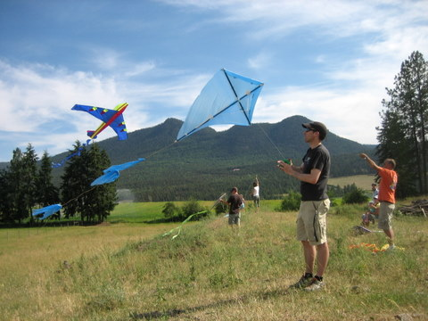 DIY Kite Designs: How To Make A Kite - Squawkfox