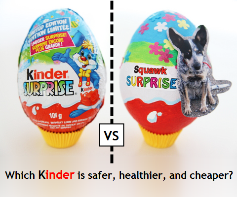 Squawk surprise make a 'squawk mock' kinder egg and treat your