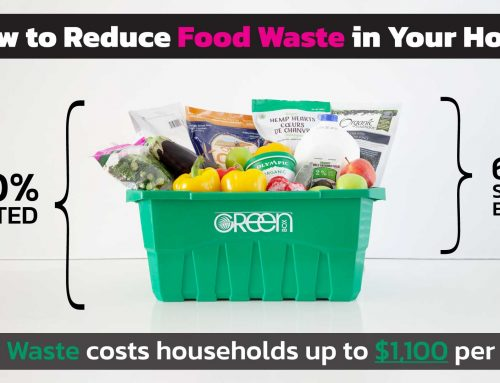 How to Prevent Food Waste (and save $1,000 per year)