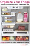 5 Steps to a freshly frugal fridge
