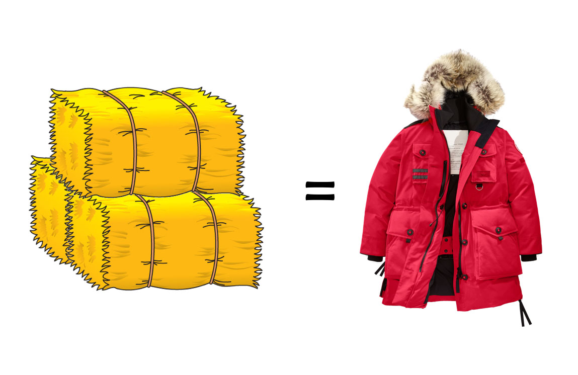 Is a canada goose worth it?